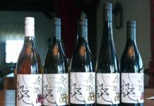 Bolfan vina