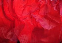 crvena